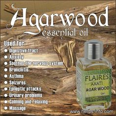 Agarwood Essential Oil - full report including uses, reported benefits, safety notes and scientific studies Coconut Oil Pulling, Coconut Oil For Skin, Natural Essential Oils, Essential Oil Blends, Holistic Remedies, Natural Remedies, Herbal Remedies, Aromatherapy Benefits, Essential Oil Perfume