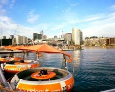 The Best Things You Didn't Know You Could Do In Melbourne
