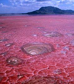 Photo extraite de Quand la nature ressemble à s'y méprendre à des scènes de science-fiction (8 photos)