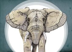 Sandra Dieckmann, I like the simpleness of the design, it's intricate and delicate in some areas but balanced by large geometric shapes that are monotone. The centering of the image draws the eye to the necessary information. Adding patterns onto the elephant creates a point of difference and is very appealing and attracting.