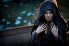 Game of Thrones - Sansa Bolton Game Of Thrones Sansa, Game Of Thrones Party, Game Of Thrones Houses, Sansa And Petyr, Sansa Stark, Khal Drogo, Game Of Thornes, Maester Luwin, Jon Snow