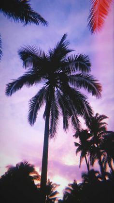Wallpaper Tumblr Lockscreen, Best Iphone Wallpapers, Pretty Wallpapers, Tropical Wallpaper, Sunset Wallpaper, Cool Wallpaper, Aesthetic Backgrounds, Aesthetic Wallpapers, Landscape Photography