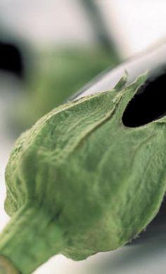 Aubergine of eierplant: recepten aubergine klaarmaken als exotische gerechten
