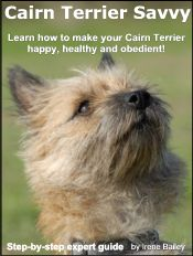 Cairn Terrier Guide