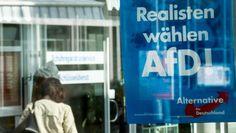 AfD-Steuerpläne würden Besserverdiener entlasten und Sozialabgaben kürzen