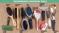 Grooming your dog regularly helps to keep your home clean. Just make sure to purchase the correct tools. Grooming Your Pet Dog Grooming Tools, Dog Grooming Salons, Dog Grooming Business, Dog Grooming Supplies, Dog Supplies, Puppy Care, Dog Care, Dog Hacks, Dog Accessories