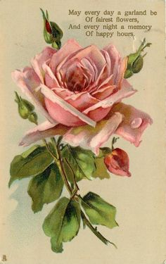MAY EVERY DAY A GARLAND BE... OF HAPPY HOURS  pink rose