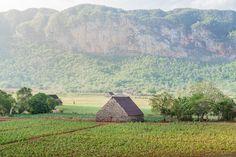 Vinales mogotes tobacco Cuba