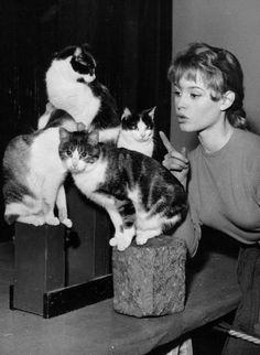Brigitte Bardot 1950s