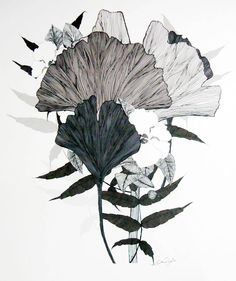 gingko leaves | neutral colors