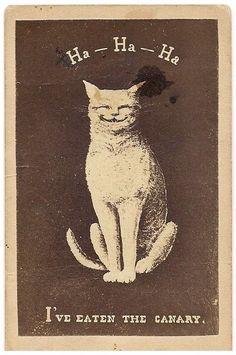 :D ! Carte de Visite, late Victorian lithograph.