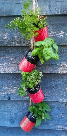 DIY tin can herb holder by lana More