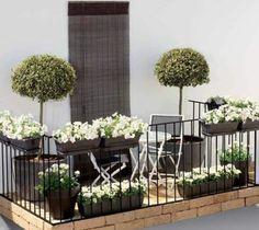 großartige pflanzen auf der terrasse einrichtungsideen