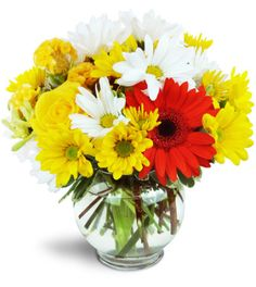 Wow! For a burst of real cheer, our combo of bright yellow, red, and white is a perfect pick-me-up! Send your best birthday wishes, Get Well, and more - they'll love it!