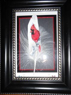 Cardinal on a birch limb