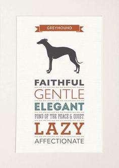 These modern and stylish Greyhound prints display the common characteristics of a Greyhound in a range of complimentary typefaces and make a great