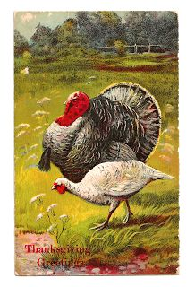 Antique Images: Printable Thanksgiving Greeting with Turkey Digital Download of Holiday Clip Art