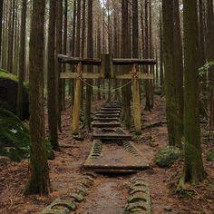 【kazu_honnda】さんのInstagramをピンしています。 《山頂へ向かう道  2017/1/9  #雲仙 #雲仙岳 #高岩山 #山 #登山#山登り #鳥居 #山道 #参道 #神社 #岩 #森 #unzen #mtunzen #mountains #mountain #hiking #trekking #walking #climbing #mountainclimbing #torii #gateway #trail #mountaintrail #shrine #rock #forest #trees #steps》
