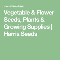 Vegetable & Flower Seeds, Plants & Growing Supplies | Harris Seeds