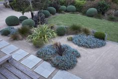 coastal, country garden design, by Fiona Brockhff Dry Garden, Native Garden, Landscape Design, Country Landscaping, Country Gardening, Outdoor Gardens, Australian Native Garden, Garden Design, Modern Landscaping