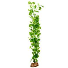 Aqueon® Artifical Begonia Aquarium Plant | Artificial Plants | PetSmart - 16 inch - $6