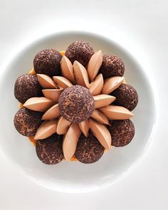 Saint-honoré 💯%🍫😋😊!!!! #testing #eze #monaco #motivation #cotedazur #grandtabledumonde #relaischateaux #restaurant #michelinstar #chocolate #kiff #tropbon #dessert #foodlove #gateau #gastronomy #bestteam #chocolat #photography #pastry #pastrylove #simplicity #culinary #pastrychef #pastryworld #gourmand #gourmandise #patisserie #patisseriedj #juliendugourd @lachevredor @retrofloxy @julien.dugourd .