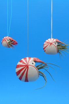 Hanging air plant holders by Cindy Searles #airplants #ceramics