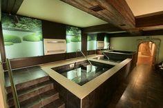 Japanese sauna - Respect Hall Resort Hotel, Ukraine