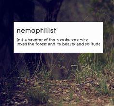 ~ Nemophilist ~