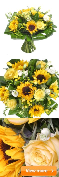 Images about sunflowers on pinterest flower
