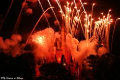 Riding the Rails: #Disney Parks at Night