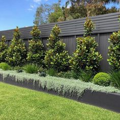 If you are looking for Small Garden Fence Ideas, You come to the right place. Below are the Small Garden Fence Ideas. This post about Small Garden Fence Ideas was. Backyard Garden Design, Small Garden Design, Backyard Plants, Outdoor Landscaping, Front Yard Landscaping, Landscaping Ideas, Privacy Fence Landscaping, Privacy Hedge, Yard Privacy