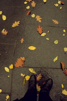 Autumn in New York City by ~ChelseaIsAPansy on deviantART