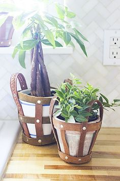 Link to tutorial on how to make upcycled leather belt planter holders for indoor plants.