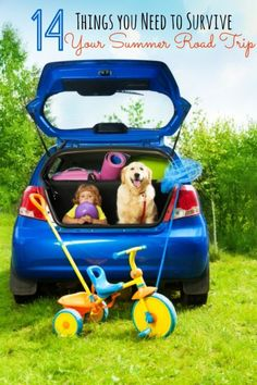 14 Things You Need to Survive Your Summer Road Trip | eBay (spon)