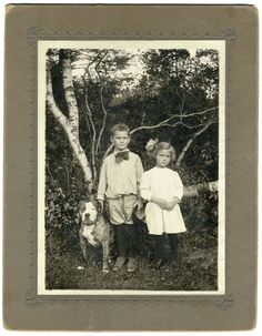 CHILDREN & PIT BULL DOG IN THE WOODS EXCELLENT ANTIQUE PHOTO LARGE & BRIGHT