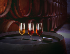 If there were justice in the wine cosmos Spain's Sherry would be one of the world's best-loved wines yet it is largely misunderstood and underappreciated. Wine Tasting Near Me, Wine Coolers Drinks, Sonoma Wineries, Wine Safari, Barolo Wine, Spanish Wine, Spanish Tapas, Wine Sale, Expensive Wine
