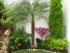 Jardín combinado #decoracionjardinesexterior