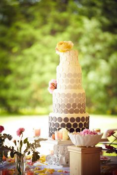 Wedding Cake  Photo By Brad Rankin Studio  Cake By Crystal's Catering and More