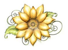 Sneak peek of the Classic Sunflower Collection debuting on September 10th!