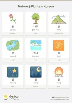 Korean Words Learning, Korean Language Learning, Language Lessons, Learning Spanish, Learn Basic Korean, How To Speak Korean, Korean Phrases, Korean Quotes, Korean Alphabet