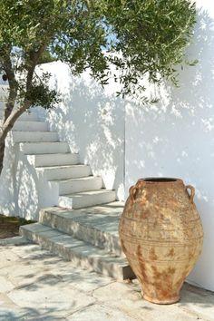 Mature olive tree, done and whitewashed stairs and an old urn. Autumn Clematis, Clematis Vine, Low Maintenance Garden, Garden Edging, Back Gardens, Garden Boxes, Plantation, Mykonos, Santorini