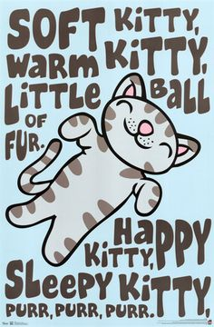The Big Bang Theory - Soft Kitty Print - AllPosters.ca