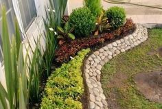 Front Yard Landscaping Ideas - Take these low-cost as well as very easy landscaping concepts for an attractive backyard. Front Garden Landscape, Yard Design, Easy Landscaping, Lawn And Garden, Succulent Garden Landscape, Cottage Garden, Front Yard Design, Plants, Garden Edging