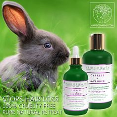 Stress Hair Loss? 3 Steps Natural hair growth! Hair Growth Botanical System Lavender & Cypress💜 Check out Botanical Hair Recovery System at our website ➡ www.hairbodymind.com 20% OFF with coupon 20EXTRA 💜 ➡Click a link in a bio 🤗🌿🌿 Great hair starts with all natural and botanical hair care products! We believe that outstanding product MUST include only the best ingredients!🌿🌿#hairstyles #hairtreatment #healthy #hairbodymind #lavender