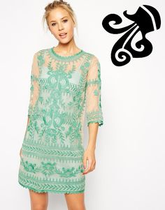 ASOS Premium Shift Dress with Embroidery.