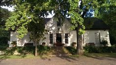 An alternative 'Big Five' wine found in South Africa Cape Dutch, Dutch House, Thatched Roof, Founded In, Wineries, Cottages, South Africa, Vineyard, Buildings