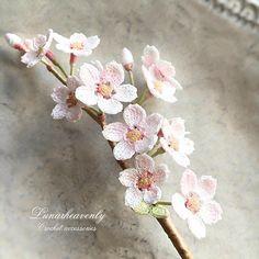 【お知らせ】 3/4 桜の一枝のピンブローチ 抽選販売受付(5点ご用意いたしました) 3/11 個展ご入場予約受付(個展は横浜にて4/22〜24開催です) いずれもネットでの受付となります。詳細はブログにアップしましたらお知らせしますね:) #crochet…