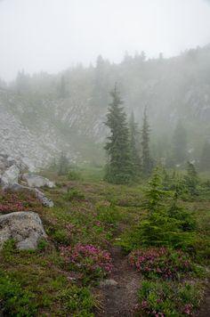 Granite Mountain by Melissa Ferrell