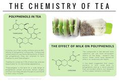 Chemistry of Tea